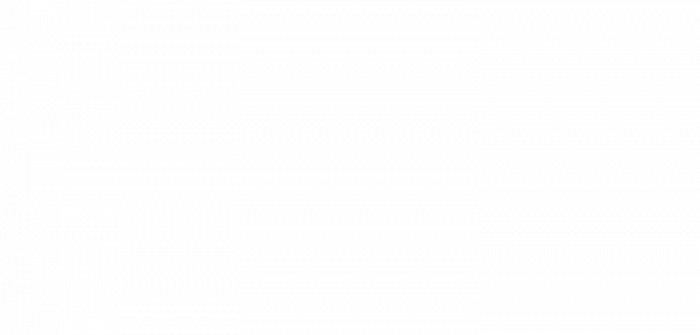 flag med logo og windtracker